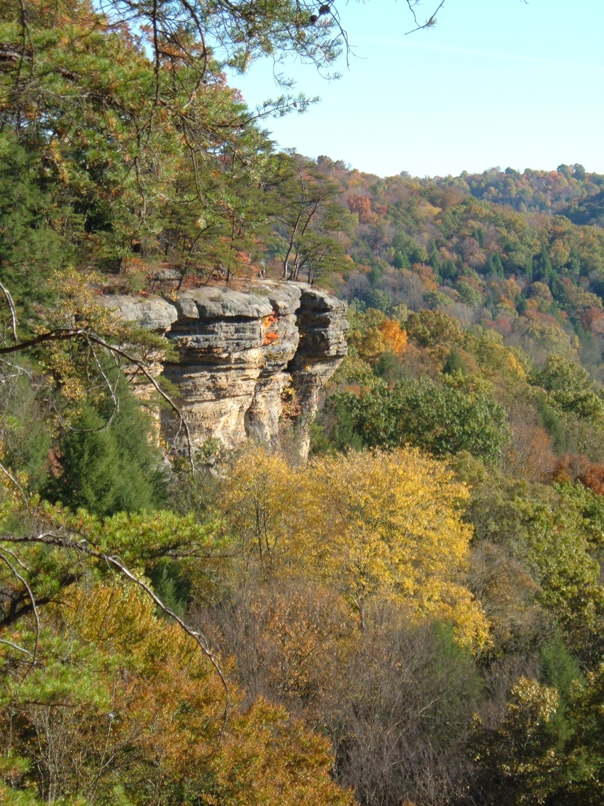 Hocking Hills – To Log Or To Preserve?