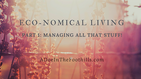 Eco-nomical Living: Stuff Management